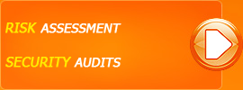 Security audit Risk assessment